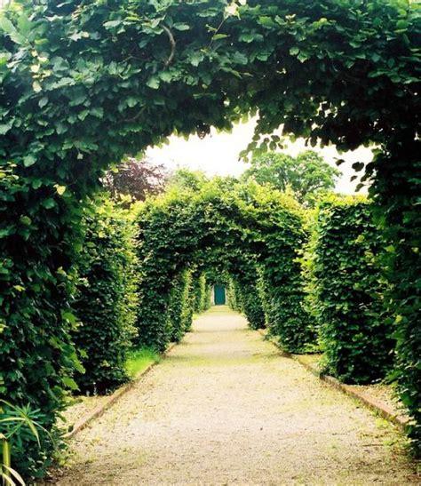 Green Garden by Green Garden Arches A Photo From Roscommon Trekearth