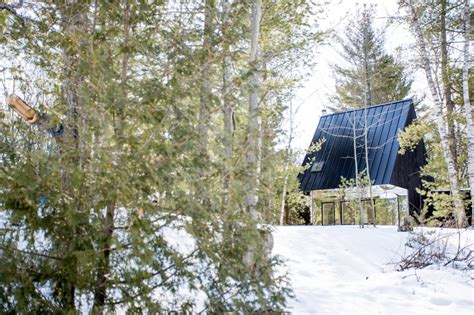tree house cottage uufie reinterpret tree house in canadian lake cottage