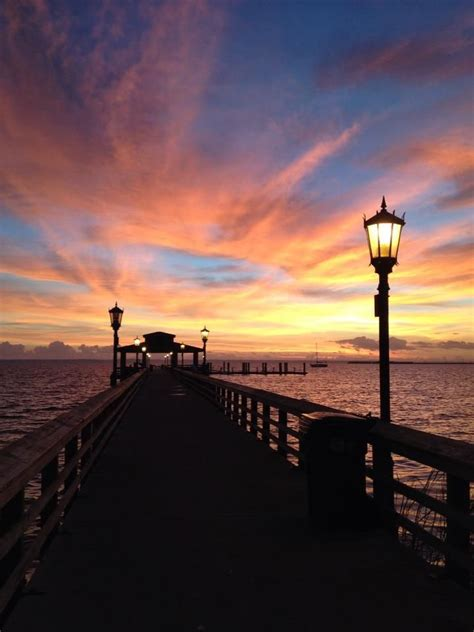 light cameras in green cove springs 17 best green cove springs images on feels