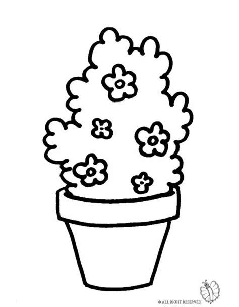 disegni di piante e fiori disegno di pianta di fiori da colorare per bambini