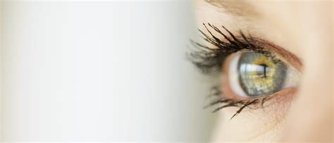 Dr Care Eye huntley eye care dr nguyen home