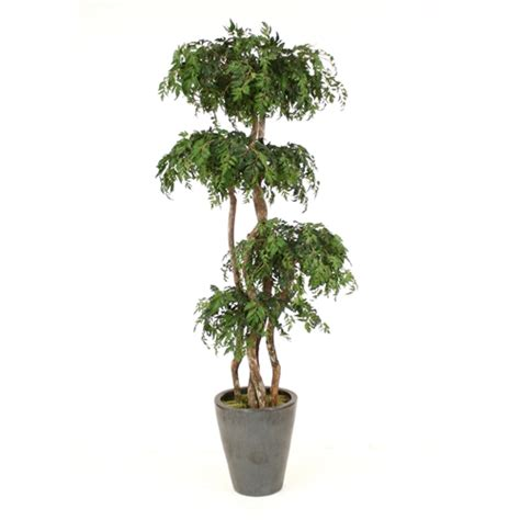 steins artificial trees 7 layered ming aralia tree in medium glazed anthracite black stoneware planter free shipping