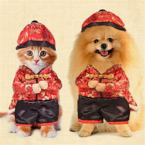 new year clothes for dogs dogloveit new year style with hat costume clothes