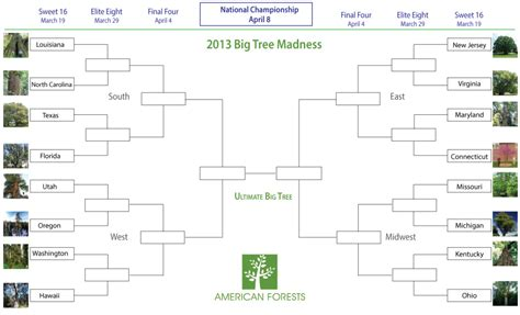 bracket template word phone tree template phone tree template word excel
