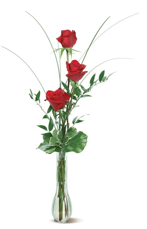 Caring For Roses In A Vase by Your Florist Fs543 Trio Three Roses In A Bud Vase Accented With Just A Bit Of