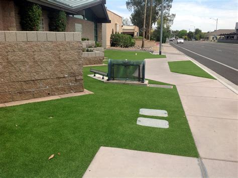 turf front yard grass carpet alpine california landscape