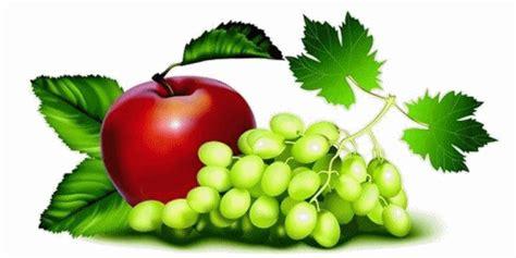 Chlostanin Gold Vitamin Untuk Pola Hidup Sehat anjuran sehat penderita batu ginjal pasti selalu ada