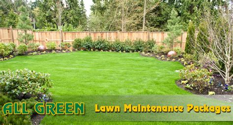 All Green Lawn And Tree Berks County Lawn And Tree Service All Green Landscaping