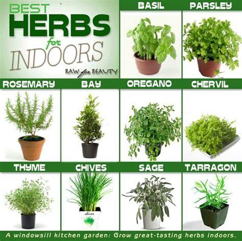 Window Herbs Kitchen Window Herbs Let It Grow