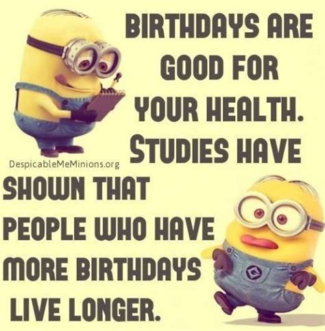 Catchy Birthday Quotes Best 25 Funny Birthday Wishes Ideas On Pinterest