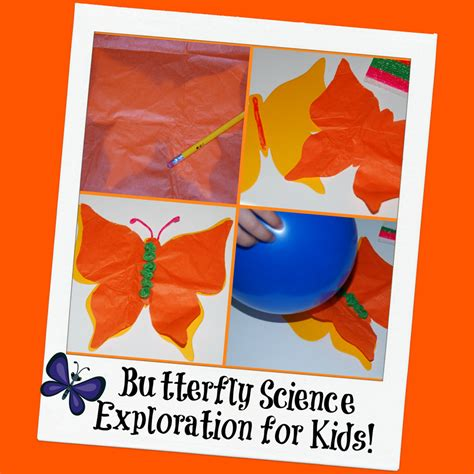 science craft for butterfly craft and science exploration for wikki stix