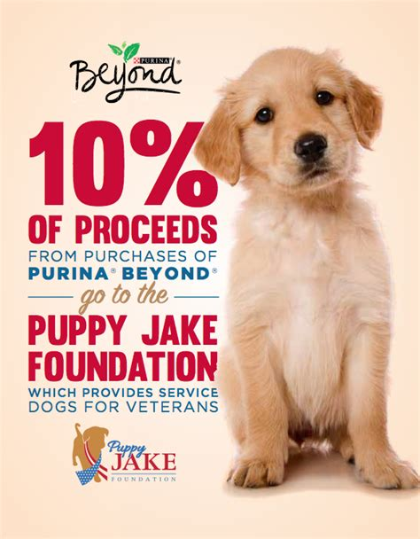 puppy jake foundation hyvee purina quot beyond quot promotion puppy jake foundation