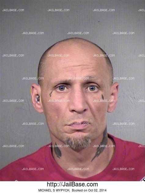 Mcso Arrest Records Michael S Wypych Arrest History