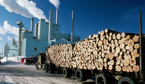 of the pulp and paper pulp and paper mill upgrades it s emergency equipment haws