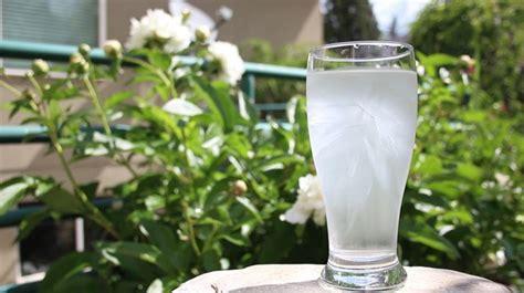 gimana cara membuat infused water gimana cara membuat es batu instan gimana bisa