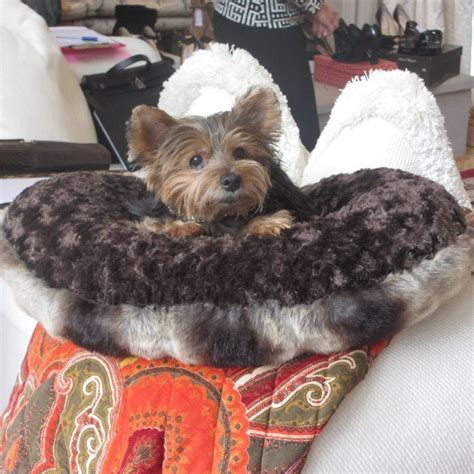 yorkie beds small dog beds for small dogs puppy hugger