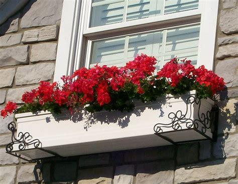 window box flower ideas fall flower window box ideas interior design ideas