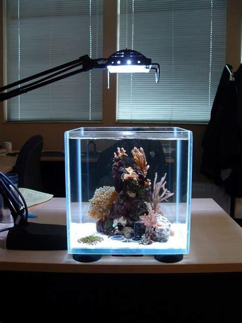 ideas integrate aquarium designs   wall    living room interior design ideas