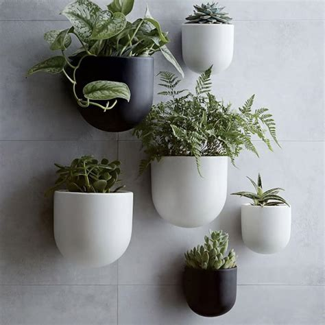 West Elm Wall Planter by Pretty Hanging Planters 150 Hgtv S Decorating