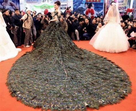 Gaun Pengantin Merak gaun pengantin paling unik di dunai raranta berita