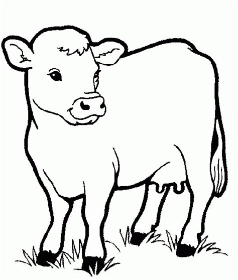 cow animals coloring pages for kids printable coloring