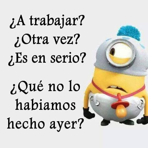 Memes De Los Minions En Espaã Ol - las 25 mejores ideas sobre frases de minions en pinterest