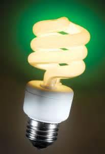 fluorescent light bulbs www galleryhip com the hippest