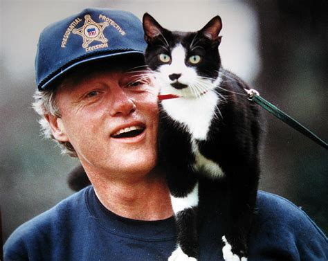photo1 jpg picture of lincoln from lincoln to and clinton cats lived with