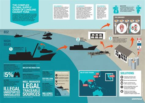 longline fishing boat design infographic over the longline fishing industry for