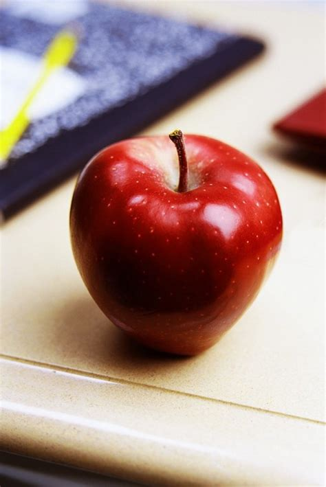 apple education why the common core is bad for america truth in american
