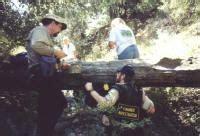 San Bernardino County Coroner Records B 24e Crash Site