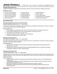 executive resume sles executive director of sales business development resume