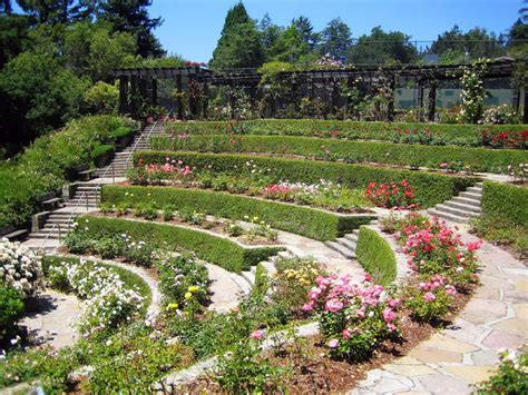Oakland Botanical Garden Berkeley Garden