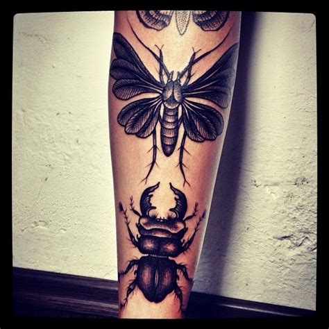 insect tattoos 17 best images about insects tattoos on insect