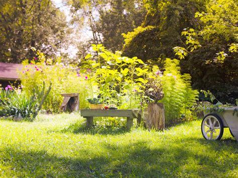 make vegetable garden how to make a vegetable garden in your backyard