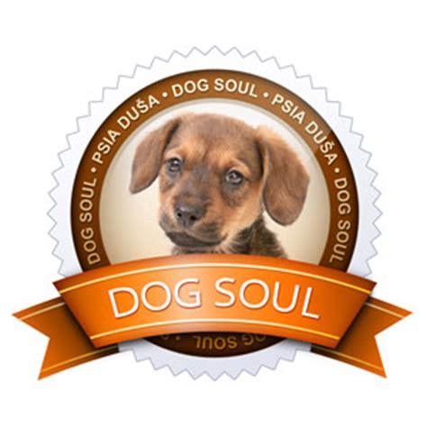 do dogs souls projekt soul psia duša