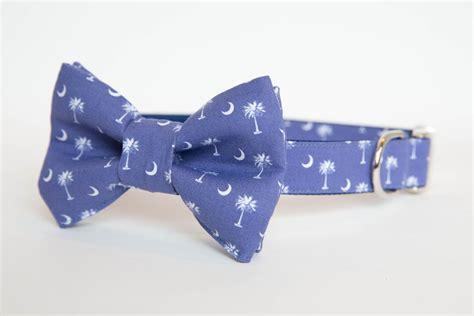 puppy bow tie bowtie collar south carolina pride in blue pecan pie puppies