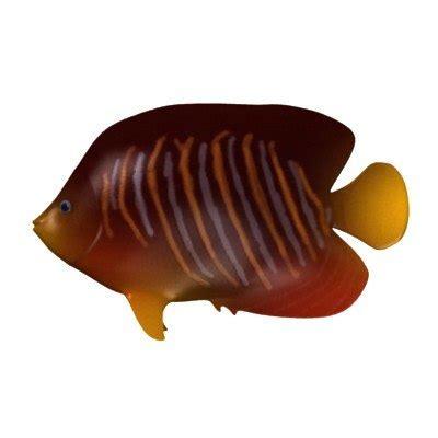 Aquarium Fish Model Cumi 13 Liter tropical fish 3d model