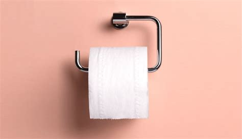 How They Make Toilet Paper - does putting toilet paper on the seat actually do anything