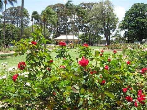 Garden Queensland Queensland State Garden Toowoomba Rosarium Toowoomba