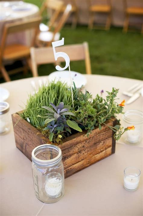 39 best images about wheat grass centerpieces on pinterest