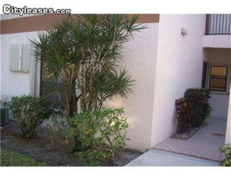 3 bedroom apartments in coral springs florida college apartments in pompano beach college student