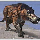 Bruhathkayosaurus | 1200 x 1108 jpeg 151kB