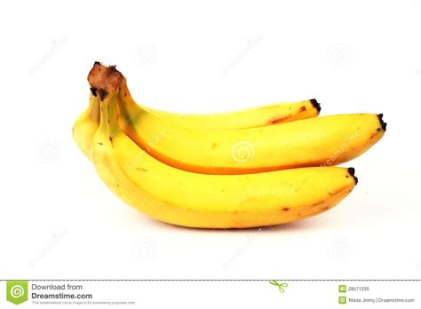 Sweet Banana sweet banana royalty free stock photo image 28571235
