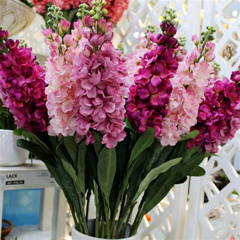 Where To Get Wedding Flowers by Get Cheap Delphinium Wedding Flowers Aliexpress