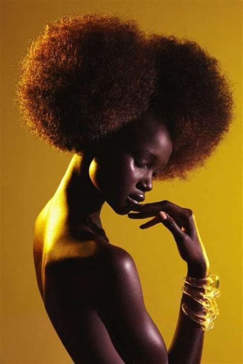 afro hairstyles for black women to wear natural afro hairstyles for black women to wear