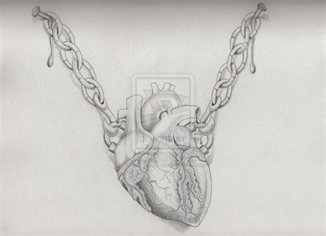 realistic heart tattoo designs design realistic by madporcupine on deviantart