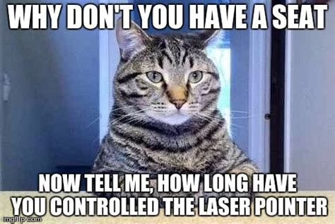 Laser Pointer Meme - have a seat cat imgflip