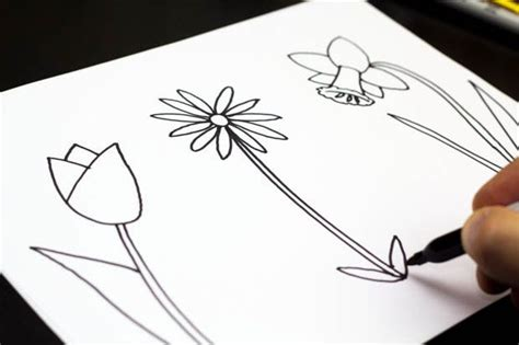 spring pictures to draw how to draw three spring flowers art for kids hub