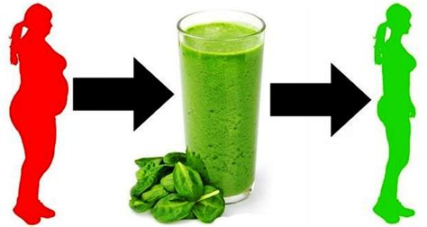 5 weight loss smoothies 5 spinach smoothie recipes for weight loss and skin